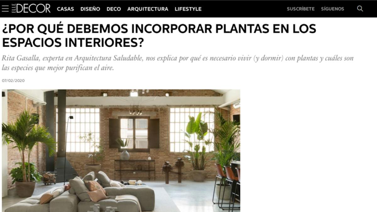 Elle Decor – Beneficios de las plantas en el interior de la casa y del dormitorio