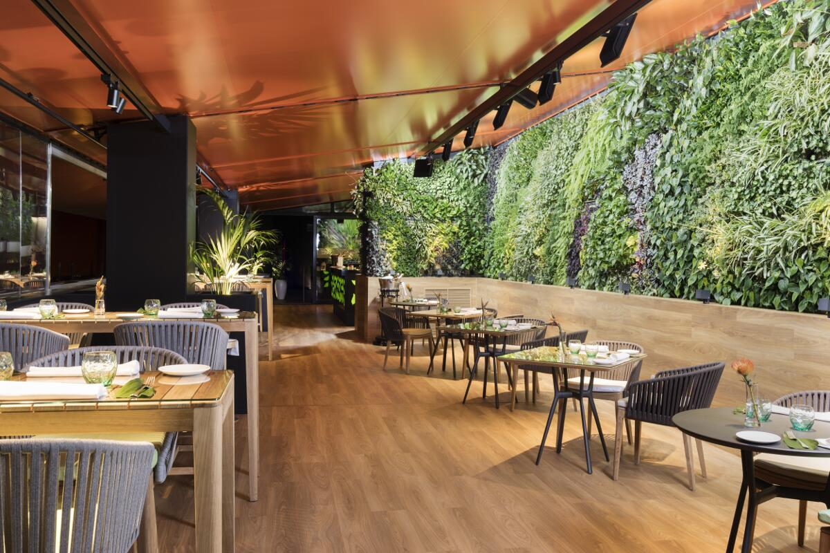 Galow arquitectura saludable restaurant vertical garden roof-galow
